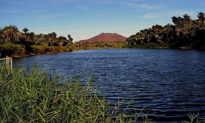 Laguna de San Ignacio