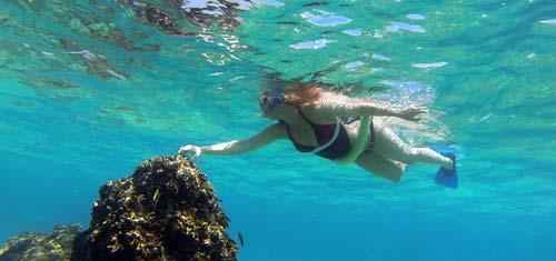 Snorkel en Cabo San Lucas