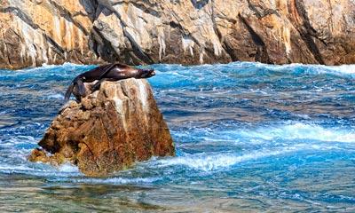 Cabo San Lucas Sunset Cruise