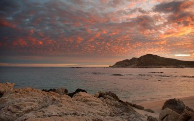 Exploring Chileno Bay: Discover this beautiful bay in the heart of Los Cabos