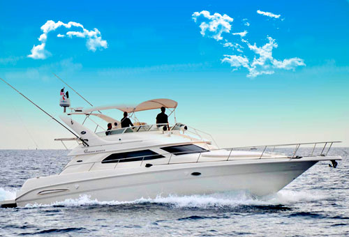 45 feet sport cruiser yacht max. 10 guests